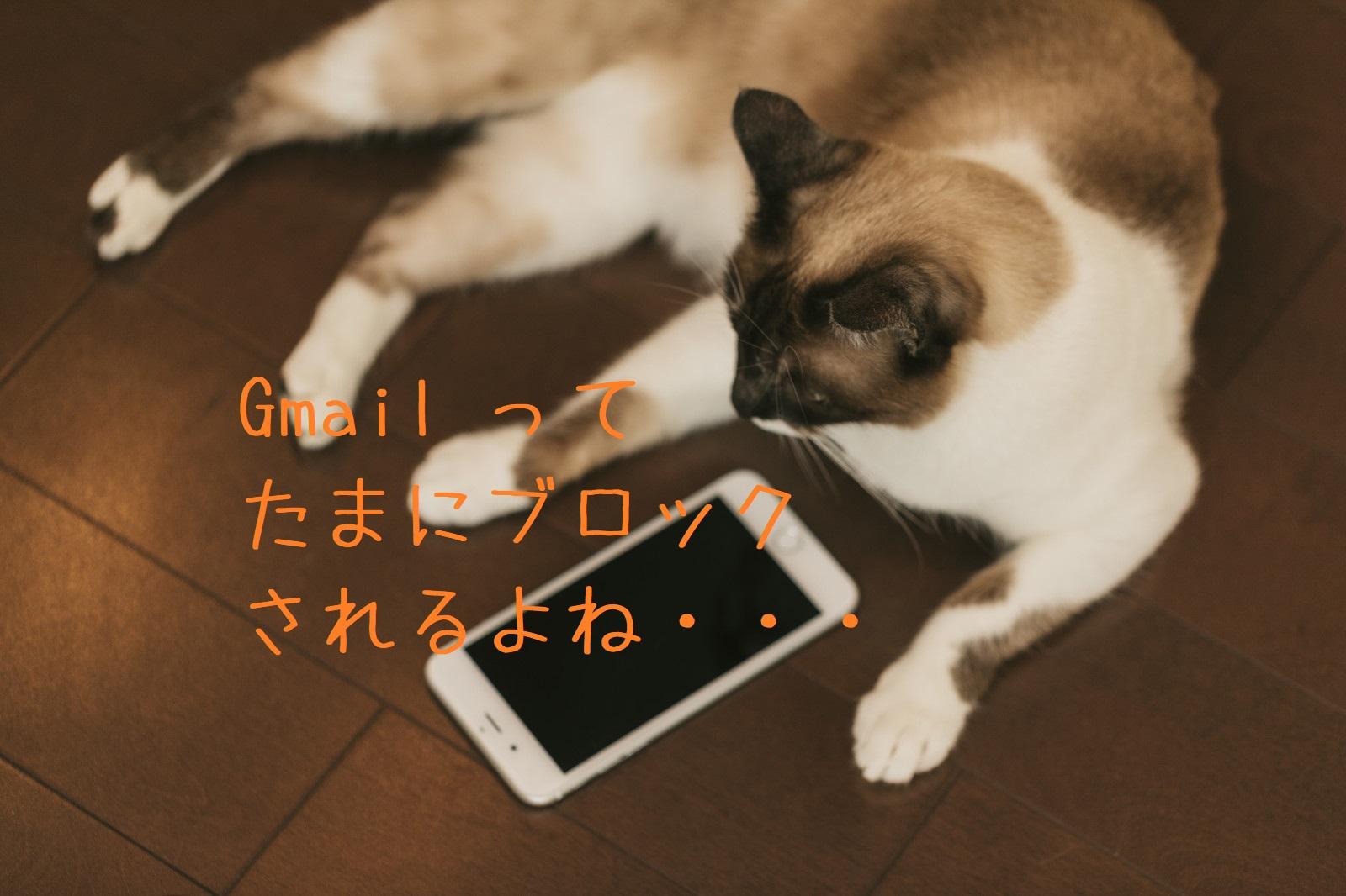 猫と電子メール